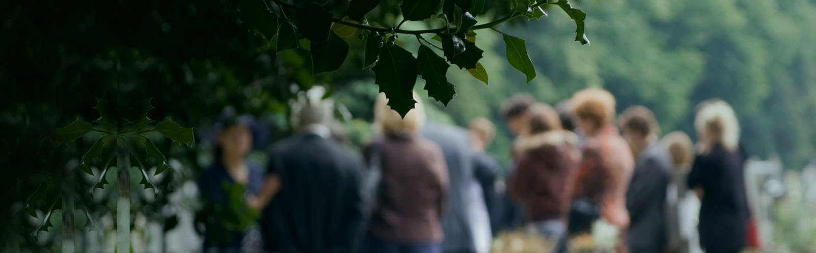 Ak Planning Masthead New Crop